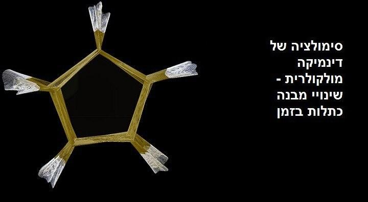 סימולציה של דינמיקה מולקולרית