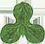 לוגו בית הספר מירב, בית הספר לרפואה משלימה. האוניברסיטה הפתוחה- לימודי החוץ